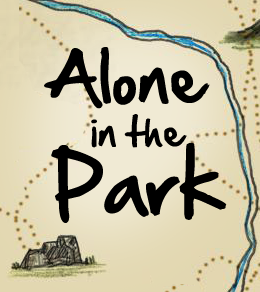 Alone in the Park Box Cover