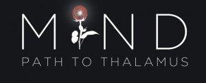 MIND: Path to Thalamus Box Cover
