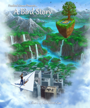 A Bird Story Box Cover