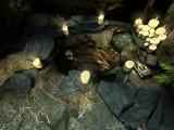 'Barrow Hill: The Dark Path - Screenshot #18