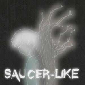 Saucer-Like Box Cover
