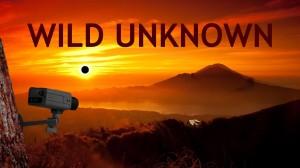 Wild Unknown Box Cover