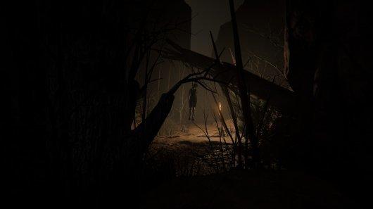 Screenshot for Outlast 2 4