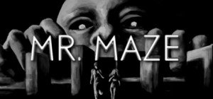 Mr. Maze Box Cover