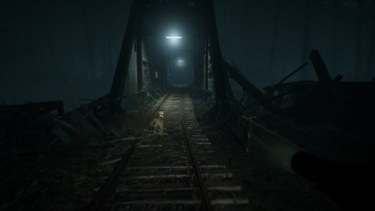 Screenshot for Blair Witch 2