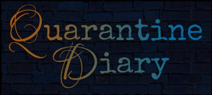 Quarantine Diary Box Cover
