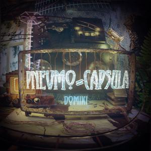 Pnevmo-Capsula: Domiki Box Cover