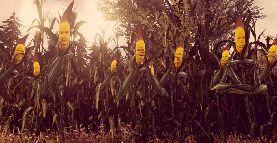 Maize review